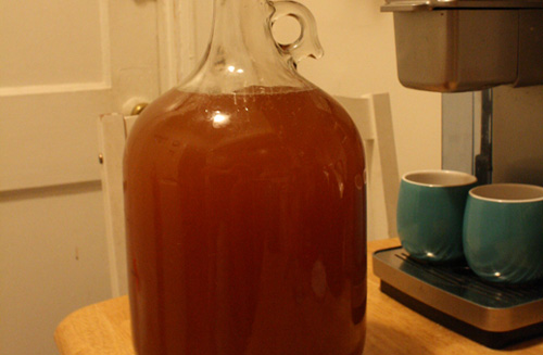 Spiced Hydromel Fast Mead